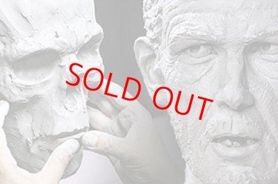 画像2: Human Head Anatomy & Sculpture