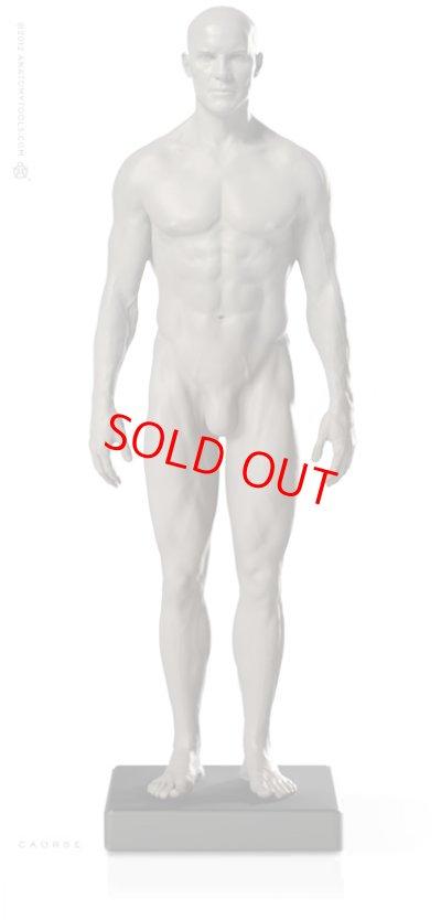 画像1: Male 1:6 Proportional fig v.2- proportion & surface form アナトミーフィギュア 男性