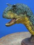 画像4: カルノタウルス (4)