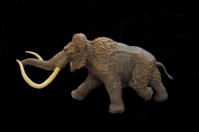 画像2: Woolly Mammoth