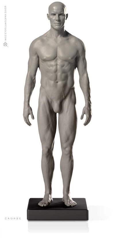 画像1: Male 1:6 Proportional fig v.2- proportion & surface form アナトミーフィギュア 男性