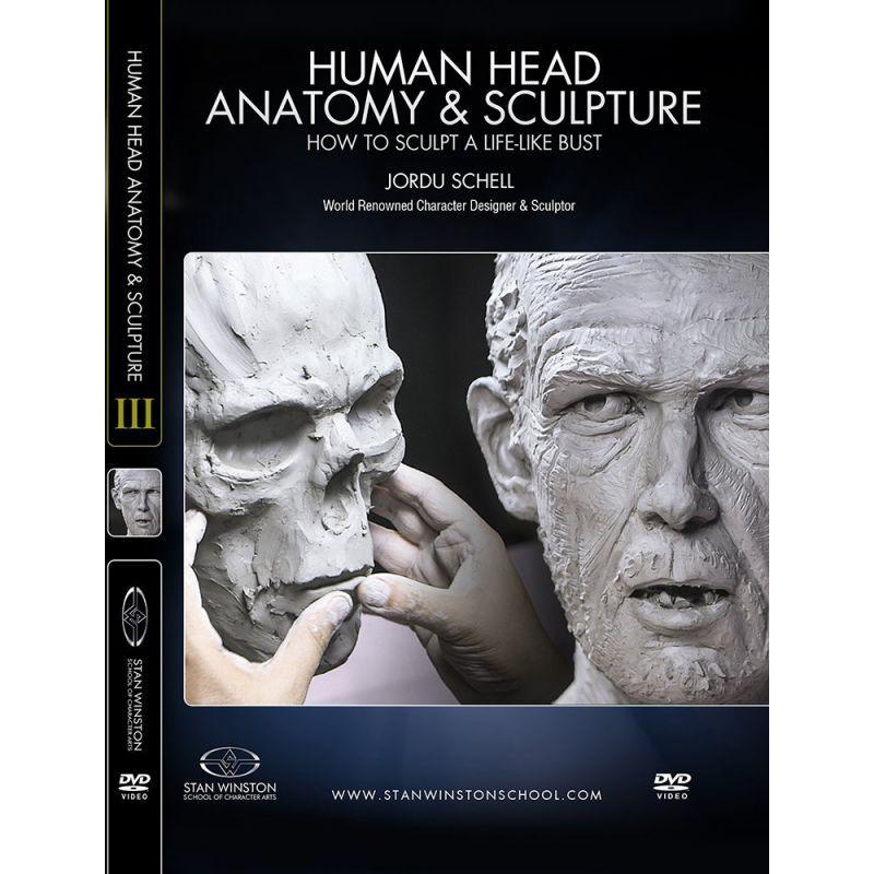 画像1: Human Head Anatomy & Sculpture